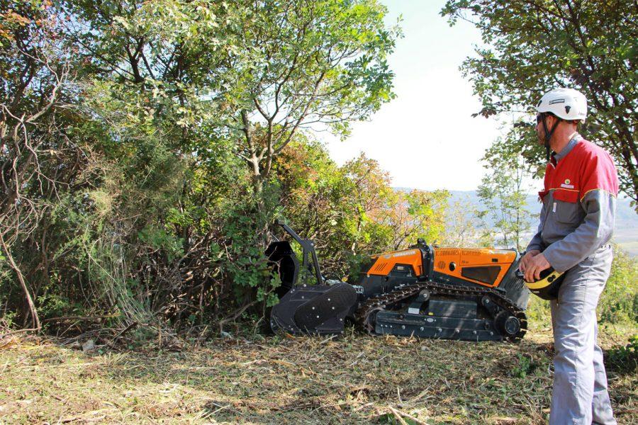 Jetzt clever investieren mit Energreen: Bis zu 40 Prozent Zuschuss für innovative Forsttechnik sichern
